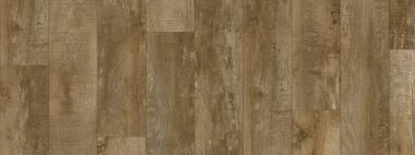 Moduleo Country Oak 24842