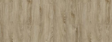 Moduleo Midland Oak 22231