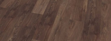 Authentic Oak-Scarlet Oak